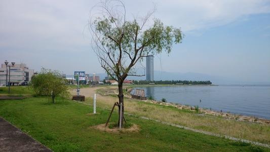 「ビワイチ」・・ 琵琶湖サイクリング、湖畔一周