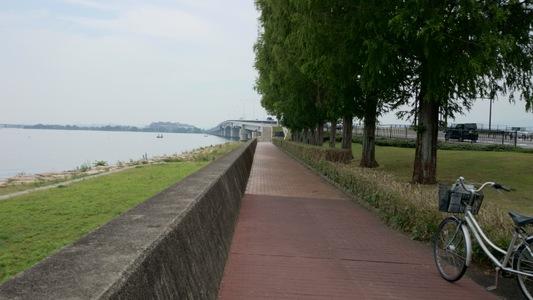 琵琶湖一周サイクリング「ビワイチ」