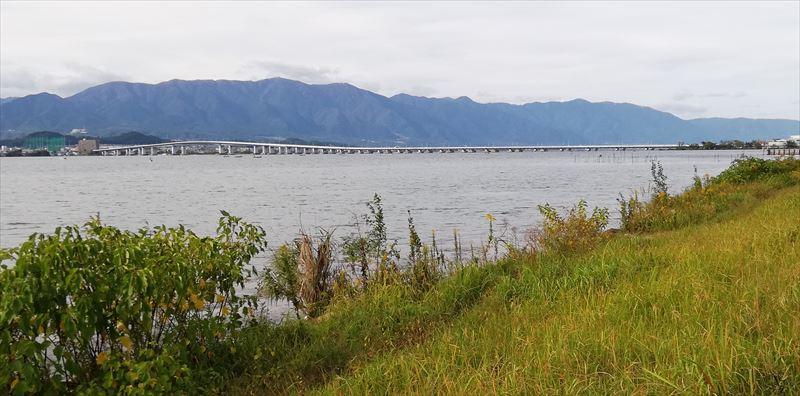 琵琶湖大橋が近くなった!・・・琵琶湖の南湖側より。南湖一周ハイキング