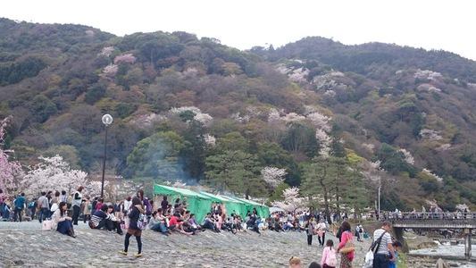 京都 嵐山公園